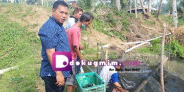 Aron Wagey, tengah mengawasi para pekerja saat menangkap ikan, Selasa (17/9/2019).(dodokugmim.nikitasangian)