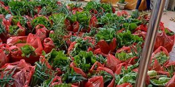 Paket hortikultura yang dibagikan dalam diakonia Jemaat GMIM Sion Pinasungkulan